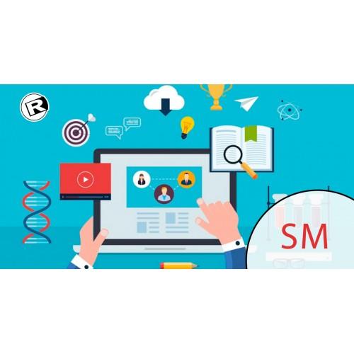 Manejo de Sitio Web - SM